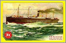 "Photo Ad: Red Star Line's SS Samland, Antwerpen - 5"" x 7"" Print On Photo Paper:"