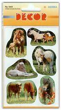 Decor-sticker Pferdefotos 5443 Herma