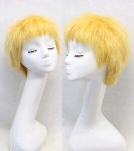 One Piece Donquixote Doflamingo Cosplay Wig Buy