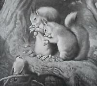 """HANDSOME 1915 EUGENE A. PERRY PRINT OF EDWIN LANDSEER'S """"PIPER AND NUTCRACKERS"""""""