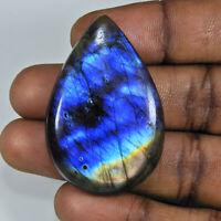 76Cts.Natural Labradorite Blue Fire Pear Cabochon Loose Gemstone 29X44X07MM o726