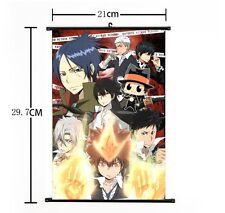 "Hot Japan Anime Hitman Reborn Sawada Home Decor Poster Wall Scroll 8""x12"" 02"