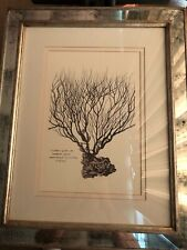 Trowbridge Gallery Framed Sea Botanical with double matte