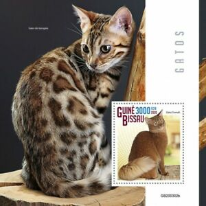 Guinea-Bissau Cats Stamps 2020 MNH Somali Bengal Cat Domestic Animals 1v S/S