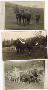 3 RPPC Real Photo Postcards Life On The Farm In Wisconsin Horses Farmers