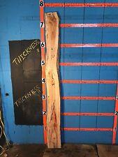 "#9885 1 1/2"" Thick Kiln Dried spalted box elder slab"