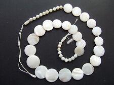 1filo 41pz perline  in conchiglia  naturale 6-18mm colore bianco