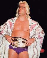 Pro Wrestler RIC FLAIR Glossy 8x10 Photo Wrestling WWF Print WWE Poster NWA