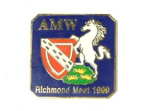 1 x 1999 Richmond Meet Cycling NORTH YORKSHIRE Enamel Badge UNFINISHED #65