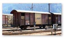BEMO 2250 100/2250100 carreggiata stretta festa carri merci gb5020 RHB ep4 Marrone h0m
