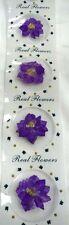 4x Larkspur Purple Real Pressed Flower 3.5cm Stickers