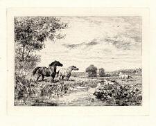 "1800s Original VEYRASSAT Etching ""Wild Horses at the River"" SIGNED Framed COA"