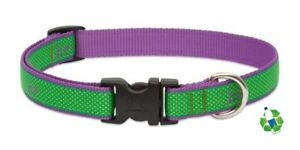 """NEW Augusta Green & Purple Dog Collar or Leash 3/4"""" or 1"""" by Lupine (Recycled)"""