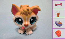 Littlest Pet Shop Dog Puppy Husky Baby Adopt 1013 and Free Accessory Authentic