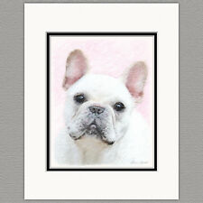 French Bulldog Frenchie Cream White Original Art Print 8x10 Matted to 11x14