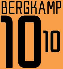 Holland Bergkamp Nameset 2002 Shirt Soccer Number Letter Heat Print Football A