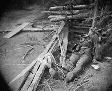 Body of a Confederate Soldier - Spotsylvania, VA - 8x10 US Civil War Photo