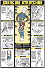 Womens EXERCISE STRETCHING WALL CHART Professional Fitness Club Gym Poster