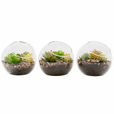 New Listing3pcs Globe Glass Ball Planter Vase Flower Plant Pot Terrarium Container Tabletop