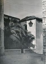 ST PAUL DE VENCE c. 1935 -Maison du Village Palmiers  Alpes-Maritimes - DIV 6959