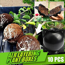 10x Plant Root Grafting Box Propagation Clone Ball Outdoor Garden Soil Cultivate
