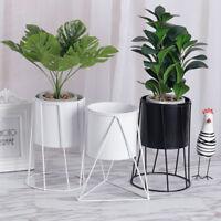 Metal Plant Stand Succulent Flower Planter Flower Pot Home Garden Decoration