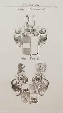 1847 Wappen Freiherren Von Pelkhoven von Perfall Kupfer von Tyroff Coat of Arms
