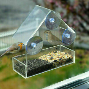 2 x Window Bird Feeder Wild Table Hanging Suction Perspex Clear Viewing Seed Nut