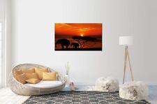 Sticker Mural Autocollant Éléphant Coucher de soleil taille: 120 x 70 cm