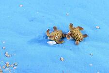 2 pc Miniature Swimming Sea Turtle Fairy Garden Animal Ornament Terrarium Supply