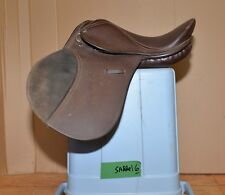 Thorn hill Grady Jr all purpose youth English saddle horse riding equestrian