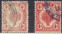 MALAYA KEDAH 1921 rice sheaf 4 cents red VFU MAJOR ERROR & VARIETY: DRY PRINT