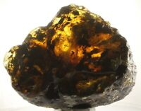 CLOSEOUT!!!  HALF polished Mexican Amber 755g