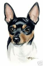 Toy Fox Terrier Art Print Dog Watercolor 8 x 10 Signed by Artist Djr w/Coa