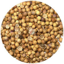 Coriander (Dhania) Seeds - 1 KG