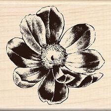 Flower Blossom Wood Mounted Rubber Stamp Brenda Walton Inkadinkado 60-00640 NEW