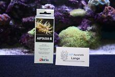 Red Sea Aiptasia-x 60 Ml gegen Glasrosen Aiptasia Etc.
