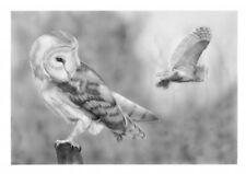 Limited edition artists print- Barn Owl