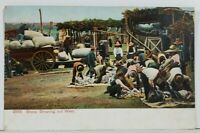 Sheep Shearing Out West McKinney Texas to Glenwood Montana c1908 Postcard N4
