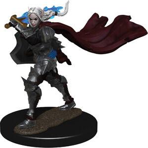 Adventurers Pathfinder Battles: Half-Elf Ranger Female - Premium Painted Figure