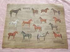 """VINTAGE  14"""" X 11"""" PAPER PLACEMAT HORSES"""