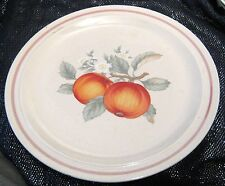 Wonderful 80's style dinner plate with apple fruit pattern approx 10¾ ins wide