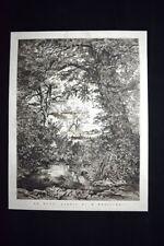 Le Rane, quadro di H. Hanoteau Incisione del 1876