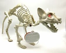 Skeleton Cat Animated Lights Sounds Halloween Decoration 23x10x5 Inch New