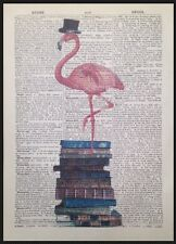 Vintage Pink Flamingo Print Original 1933 Dictionary Page Wall Art Picture Books