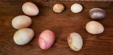 9 Vintage Italian Alabaster Stone Marble Granite Polished Easter Eggs 7Lrg 2Sml