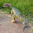 Large 25CM Allosaurus Rex Dinosaur Model Play Toys Rubber Stuffed Animal Figures