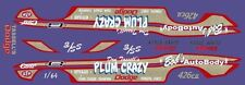 Don Tassell's Plum Crazy Dodge 1/64th HO Scale Slot Car Waterslide Decals