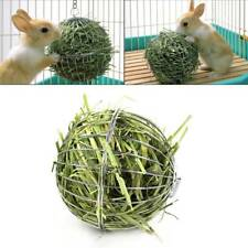 Stainless Steel Rabbit Feeder Ball Animal Bunny Hay Grass Shelf Rack Toy 3.15""