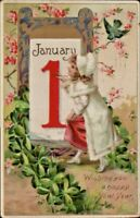 Antique Postcard  Tuck's  Wishing you a Happy New Year Girl Painting 1910 #600